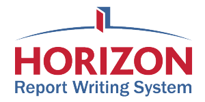 report writing system